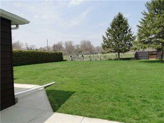 Photo 9: 2872 Sunset Drive in Ramara: Rural Ramara House (Bungalow) for sale : MLS®# X3119497