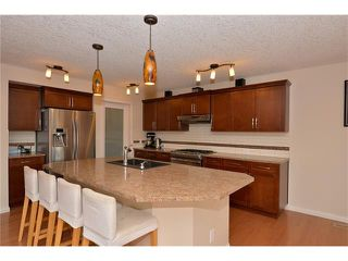 Photo 8: 35 JUMPING POUND Terrace: Cochrane House for sale : MLS®# C4031743