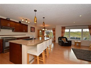 Photo 6: 35 JUMPING POUND Terrace: Cochrane House for sale : MLS®# C4031743