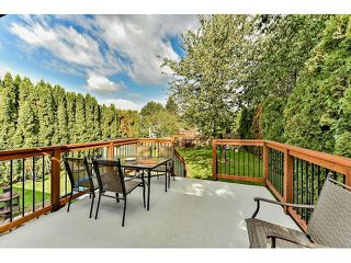Photo 17: 18065 57 Avenue in Surrey: Cloverdale BC House for sale (Cloverdale)  : MLS®# R2002625