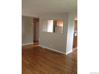 Photo 5: 938 Greencrest Avenue in Winnipeg: Fort Garry / Whyte Ridge / St Norbert Residential for sale (South Winnipeg)  : MLS®# 1530498