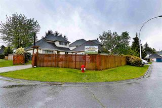Photo 20: 12852 73 Avenue in Surrey: West Newton House for sale : MLS®# R2167370