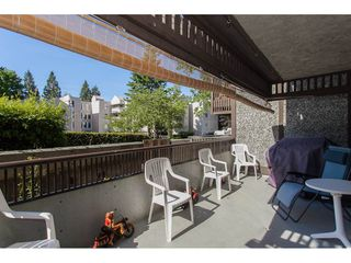 """Photo 20: 118 9682 134 Street in Surrey: Whalley Condo for sale in """"Parkwoods"""" (North Surrey)  : MLS®# R2175006"""
