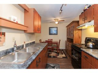 """Photo 13: 118 9682 134 Street in Surrey: Whalley Condo for sale in """"Parkwoods"""" (North Surrey)  : MLS®# R2175006"""