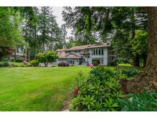 Photo 1: 17142 21 Avenue in Surrey: Pacific Douglas House for sale (South Surrey White Rock)  : MLS®# R2176109