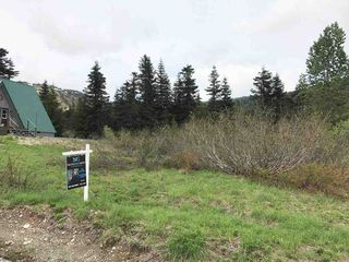 "Photo 15: 20716 SAKWI CREEK Road in Mission: Hemlock Land for sale in ""Hemlock Valley Ski Resort"" : MLS®# R2176457"