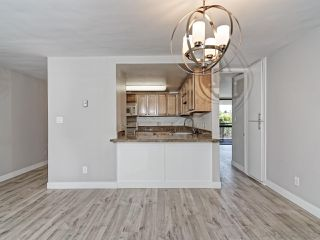Photo 6: PACIFIC BEACH Condo for rent : 2 bedrooms : 3916 RIVIERA Drive #406 in San Diego