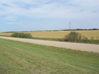 Main Photo: TWP 551 & RR 234: Rural Sturgeon County Rural Land/Vacant Lot for sale : MLS®# E4036073
