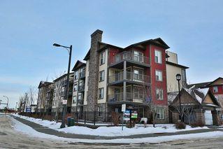 Main Photo: 401 103 AMBLESIDE Drive SW in Edmonton: Zone 56 Condo for sale : MLS®# E4139929