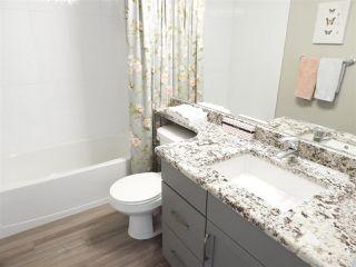 Photo 17: 20734 58 Avenue in Edmonton: Zone 58 House for sale : MLS®# E4150140