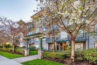 """Photo 2: 405 8183 121A Street in Surrey: Queen Mary Park Surrey Condo for sale in """"CELESTE"""" : MLS®# R2359294"""