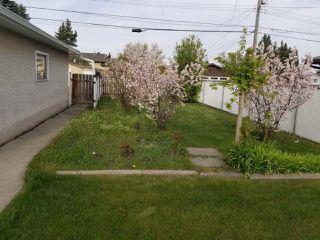 Photo 19: 13227 74 Street in Edmonton: Zone 02 House for sale : MLS®# E4158703