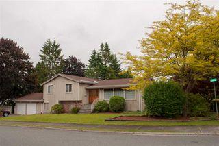 Main Photo: 380 53 Street in Delta: Pebble Hill House for sale (Tsawwassen)  : MLS®# R2374631