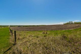 Photo 7: 54128 RGE RD 274: Rural Parkland County Rural Land/Vacant Lot for sale : MLS®# E4164136