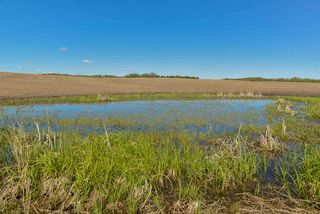 Photo 14: 54128 RGE RD 274: Rural Parkland County Rural Land/Vacant Lot for sale : MLS®# E4164136