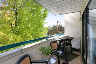 Photo 18: 208 20268 54 AVENUE in Langley: Langley City Condo for sale : MLS®# R2109826