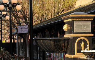 Photo 17: 405 1090 Johnson St in Victoria: Vi Downtown Condo Apartment for sale : MLS®# 841465