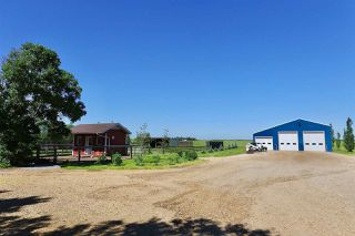 Photo 43: 233064 TWP RD 473: Rural Wetaskiwin County House for sale : MLS®# E4208037