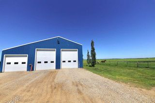 Photo 46: 233064 TWP RD 473: Rural Wetaskiwin County House for sale : MLS®# E4208037