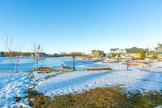 Photo 28: 40 Sunset Harbour: Rural Wetaskiwin County House for sale : MLS®# E4223803