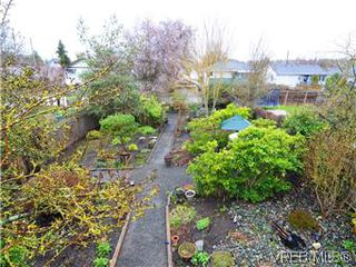 Photo 16: 2546 Shelbourne Street in VICTORIA: Vi Fernwood Residential for sale (Victoria)  : MLS®# 305804