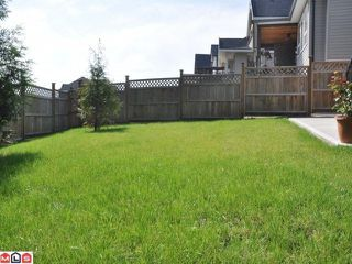 Photo 7:  in Cloverdale: Cloverdale BC House for sale : MLS®# F1200715
