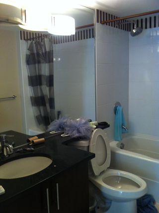 Photo 6: 203 555 Delestre Avenue in Coquitlam: Condo for sale : MLS®# V1028408