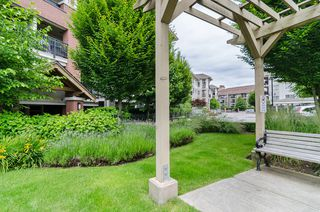 """Photo 32: # D304 8929 202nd St, Langley V1M 0B4 """"The Grove in Walnut Grove"""""""