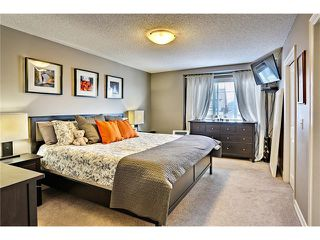Photo 20: 73 COPPERPOND Heights SE in Calgary: Copperfield House for sale : MLS®# C4026837