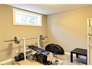 Photo 28: 73 COPPERPOND Heights SE in Calgary: Copperfield House for sale : MLS®# C4026837