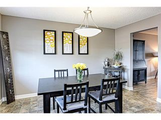 Photo 17: 73 COPPERPOND Heights SE in Calgary: Copperfield House for sale : MLS®# C4026837