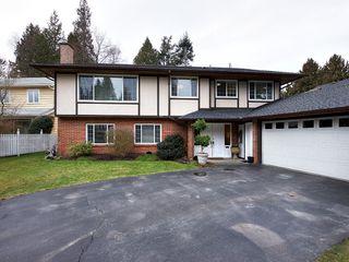 Photo 1: 4951 STEVENS Drive in Delta: Tsawwassen Central House for sale (Tsawwassen)  : MLS®# R2142826