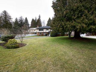 Photo 17: 4951 STEVENS Drive in Delta: Tsawwassen Central House for sale (Tsawwassen)  : MLS®# R2142826