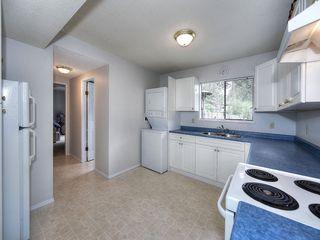 Photo 16: 4951 STEVENS Drive in Delta: Tsawwassen Central House for sale (Tsawwassen)  : MLS®# R2142826