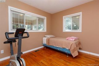 Photo 12: 4141 Tuxedo Dr in VICTORIA: SE High Quadra Single Family Detached for sale (Saanich East)  : MLS®# 769183