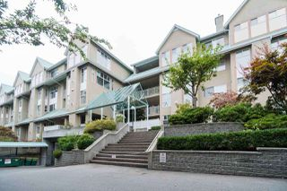"Main Photo: 313 11609 227 Street in Maple Ridge: East Central Condo for sale in ""EMERALD MANOR"" : MLS®# R2205034"