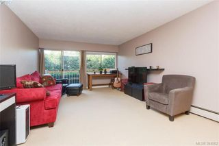 Photo 5: 107 1680 Poplar Ave in VICTORIA: SE Mt Tolmie Condo for sale (Saanich East)  : MLS®# 771821