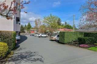 Photo 14: 101 1100 Union Road in VICTORIA: SE Maplewood Condo Apartment for sale (Saanich East)  : MLS®# 390254