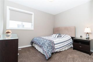Photo 16: 76 BLUMM Crescent in Winnipeg: Canterbury Park Residential for sale (3M)  : MLS®# 1817459