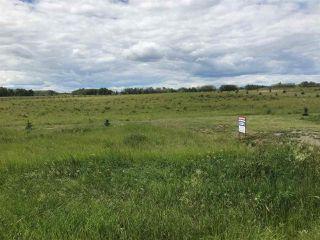 Photo 4: 63024 Rge Rd 414: Rural Bonnyville M.D. Rural Land/Vacant Lot for sale : MLS®# E4118881