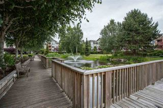 "Photo 13: 426 5500 ANDREWS Road in Richmond: Steveston South Condo for sale in ""SOUTHWATER"" : MLS®# R2288245"