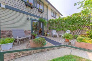 "Photo 19: 909B RODERICK Avenue in Coquitlam: Maillardville House 1/2 Duplex for sale in ""Maillardville"" : MLS®# R2301033"