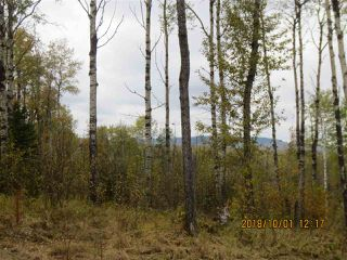 Main Photo: 11 115011 TWP RD 583: Rural Woodlands County Rural Land/Vacant Lot for sale : MLS®# E4131708