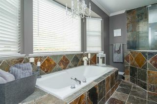"""Photo 14: 22380 50 Avenue in Langley: Murrayville House for sale in """"MURRAYVILLE"""" : MLS®# R2314692"""