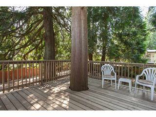 """Photo 20: 4011 196A Street in Langley: Brookswood Langley House for sale in """"Brookswood"""" : MLS®# R2339230"""