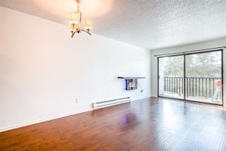 "Photo 7: 307 9952 149 Street in Surrey: Guildford Condo for sale in ""Tall Timbers"" (North Surrey)  : MLS®# R2348995"
