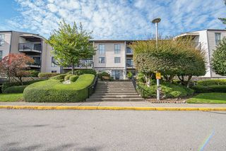 "Photo 17: 307 9952 149 Street in Surrey: Guildford Condo for sale in ""Tall Timbers"" (North Surrey)  : MLS®# R2348995"