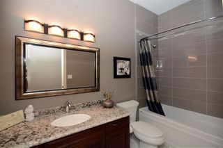 Photo 16: 66 Lacombe Drive: St. Albert House for sale : MLS®# E4147933