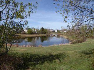 Photo 26: 11344 173 Avenue in Edmonton: Zone 27 House for sale : MLS®# E4158270