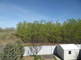 Photo 23: 11344 173 Avenue in Edmonton: Zone 27 House for sale : MLS®# E4158270